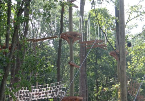 Aerial Adventure At Turtle Back Zoo