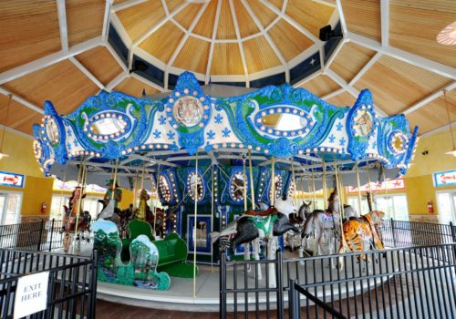 Carousel At Turtle Back Zoo